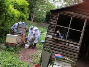 Bee keepers at allotment
